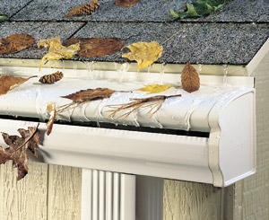 Gutter Cleaning Morris County NJ - Image 3